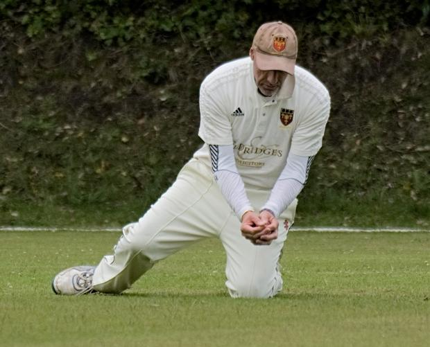 Isle of Wight County Press: Shanklin's Mark Ringer takes a good low catch to dismiss one of the Verwood top order.