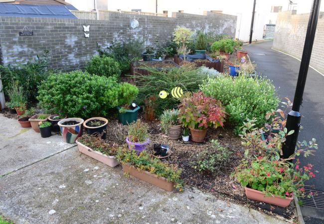 Freshwater - Jubilee Close in 2019 - Community garden being saved from being a bin store.