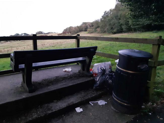 Dumped bags of litter at Cowleaze Hill, Shanklin to Ventnor road.