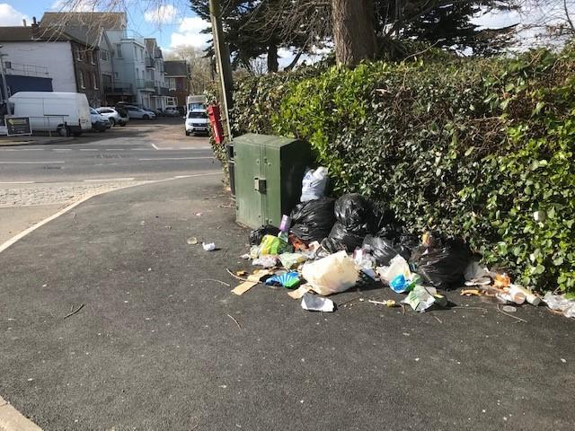 Tom Cornish's picture of flytipped rubbish in Beach Road, Bembridge.