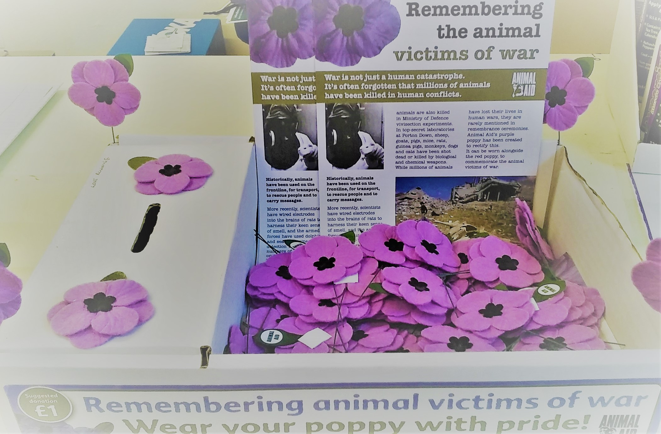 Purple poppies on sale at Love Running, Newport.