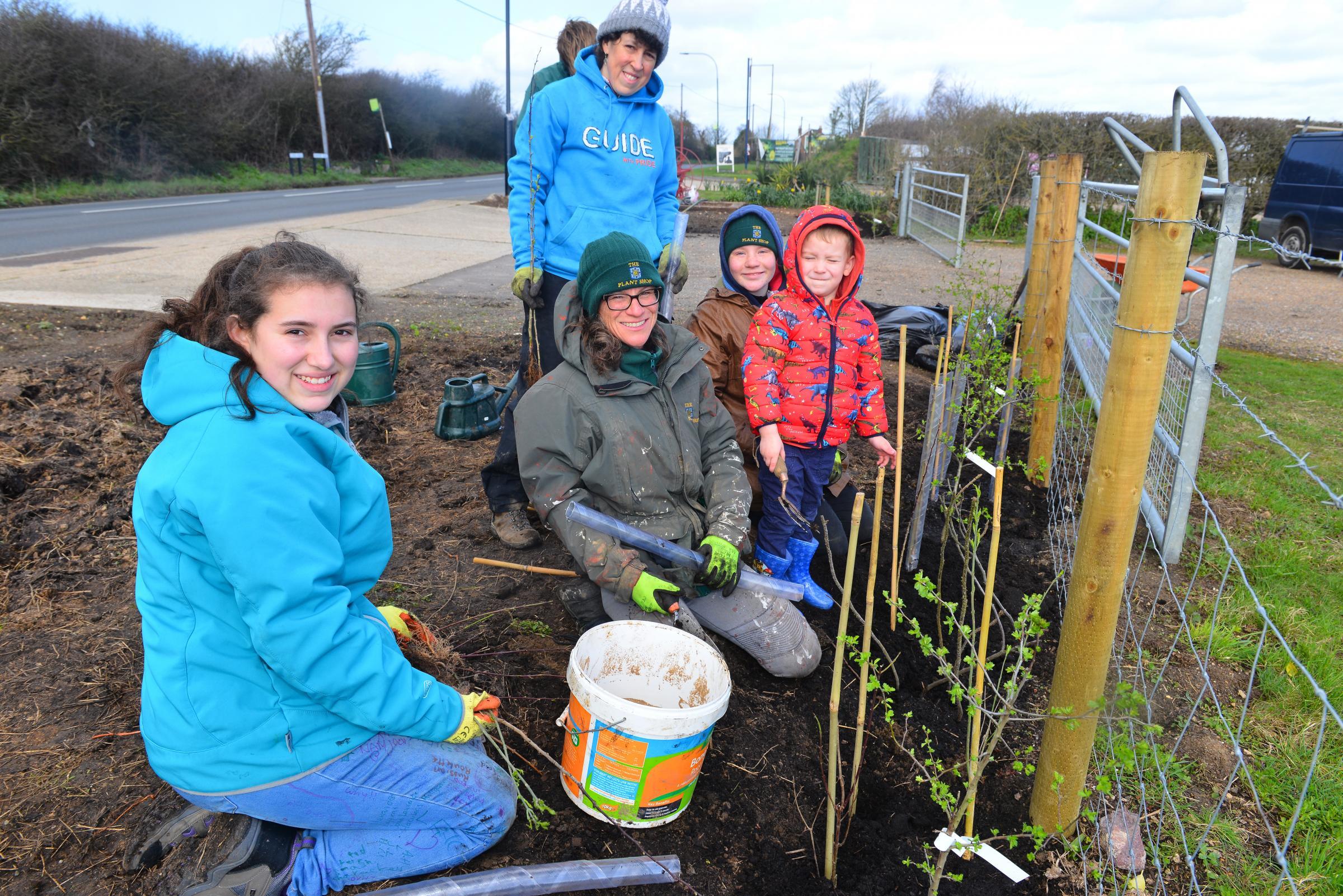 Isle of Wight guides raise funds by battling the storm and planting hedges