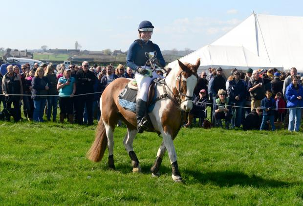Isle of Wight County Press: Georgia Carmichael, on Coblet Carla, winner of the 'Puffed Out Billy' Stakes.
