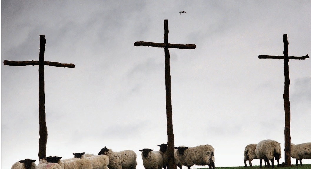 The first Easter crosses erected on Mersley Down in 2010.