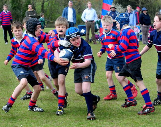 Youngsters taking part in the Vectis Rugby Club Mini Festival in a previous year at Seaclose Park, Newport.  FILE